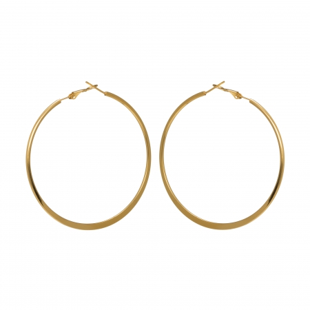 Náušnice Stainless Steel Mini Plate Hoop Earring Gold